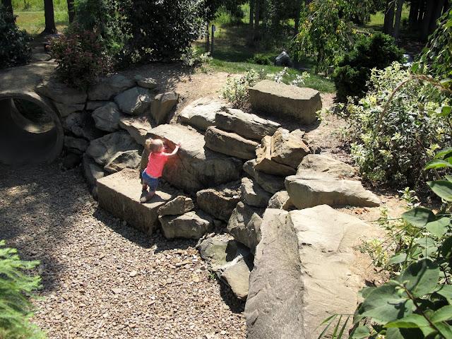 Stella Climbing Rocks