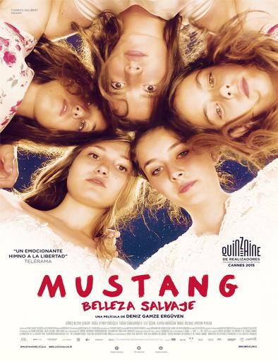 Ver Mustang: Belleza salvaje (2015) Online