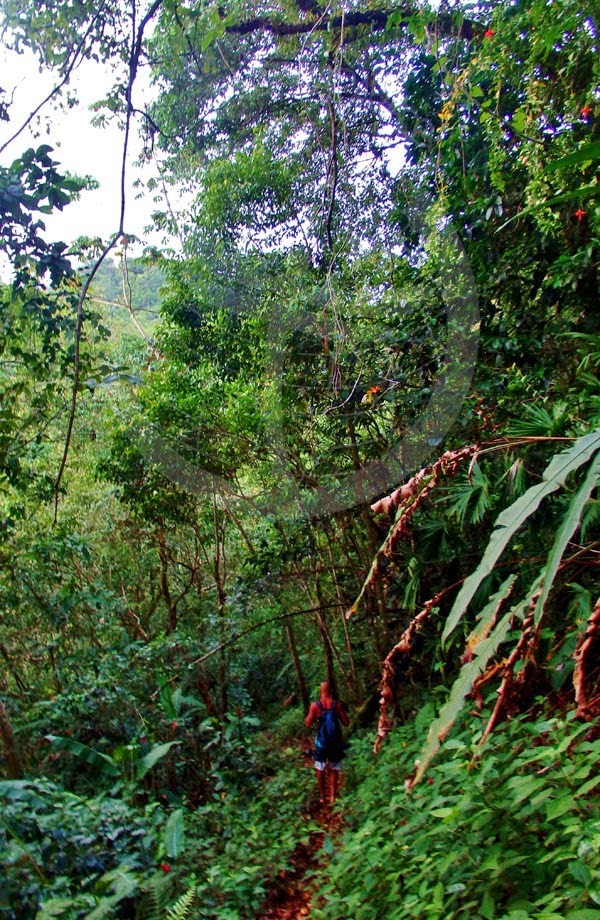 Vivir viaiando como mochileros. Una experiencia de vida salvaje en Río Coco.