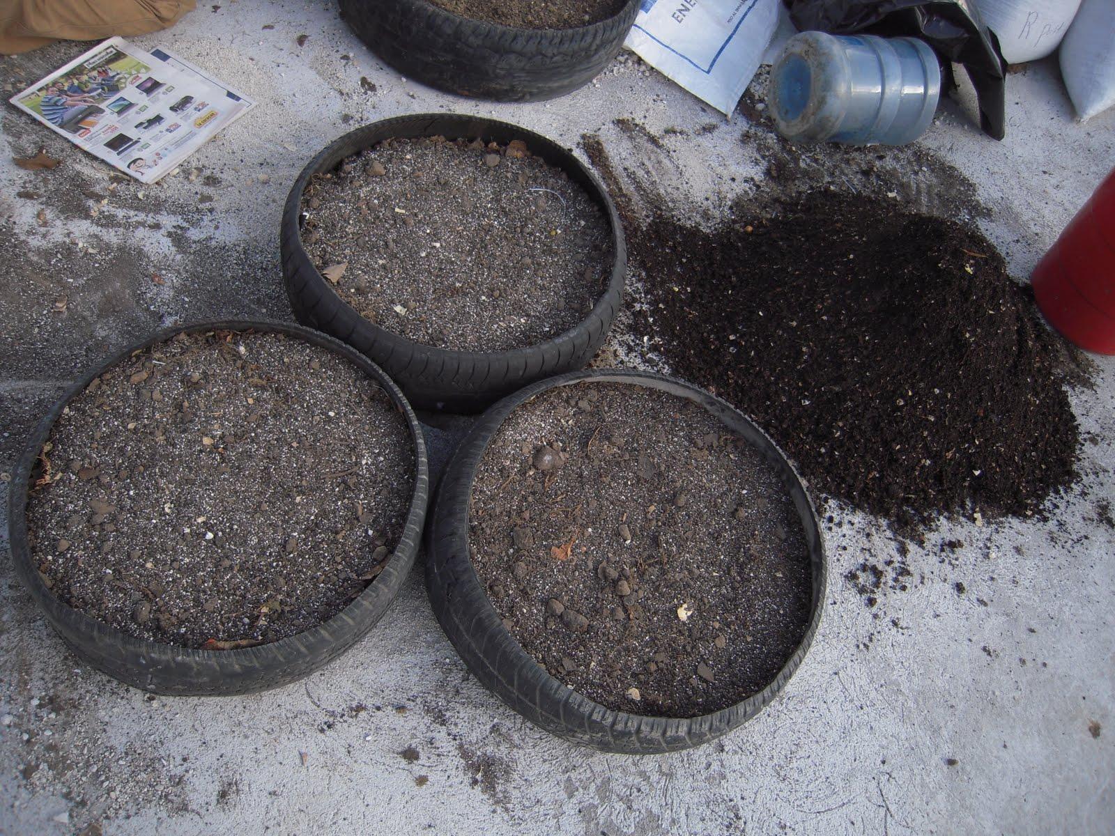 Creative Urban Gardens Part Ii The Tire Garden Semilla