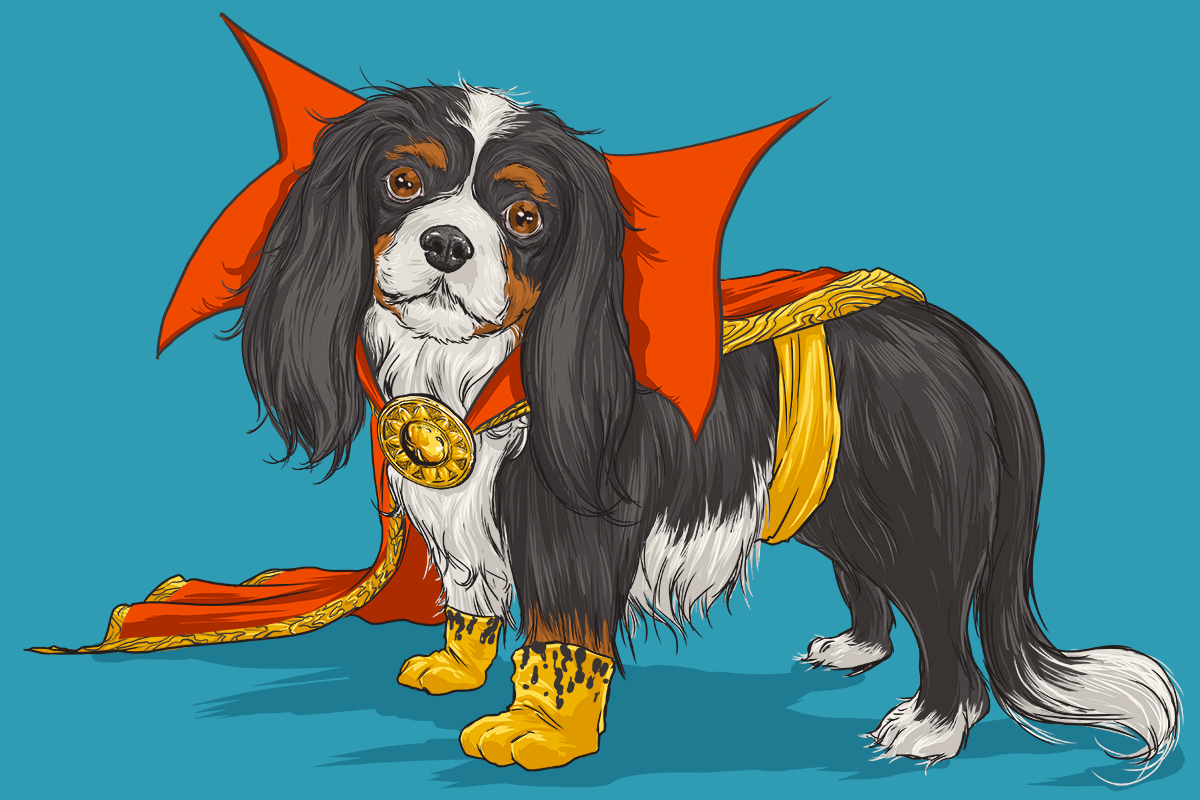 15-Josh-Lynch-Illustrations-of-Dogs-with-Marvel-Comic-Alter-Egos-www-designstack-co