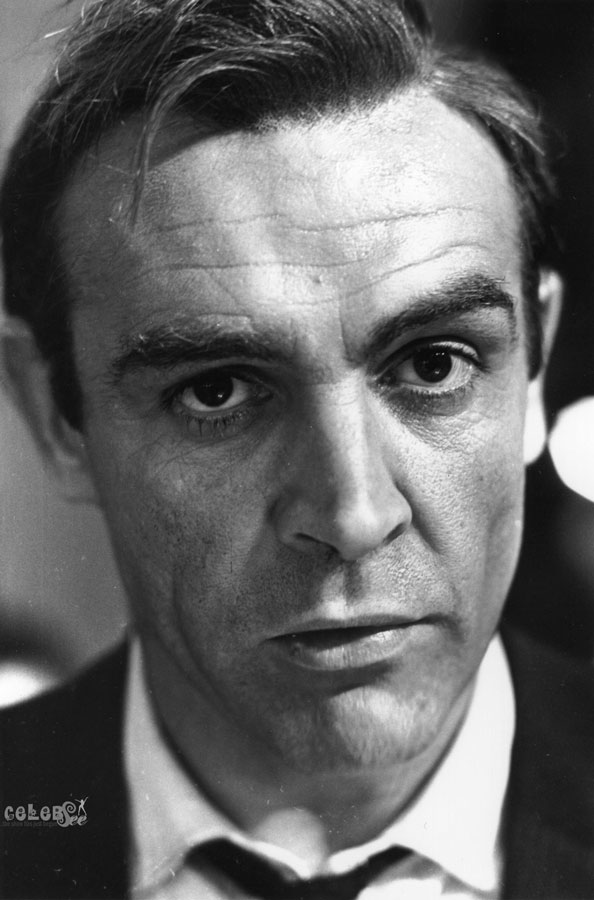 Hollywood Best Actor Sean Connery Hollywood Celebsee