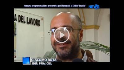 http://www.d1television.it/video/1530/nessuna-programmazione-preventiva-per-i-forestali-la-sicilia-brucia