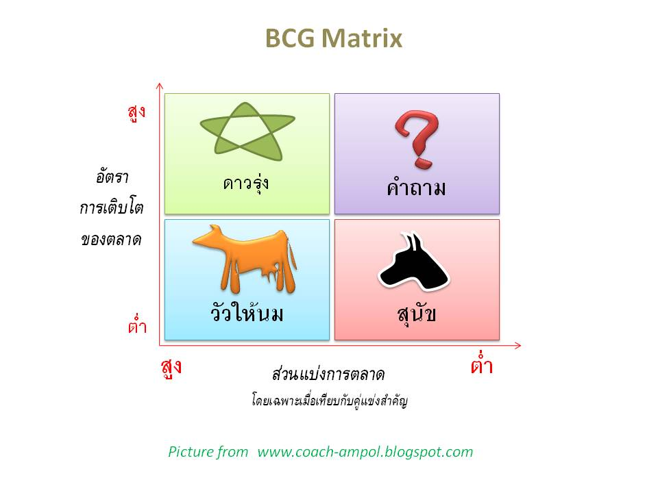 bcg matix A bcg matrix helps organizations figure out which areas of their business deserve more resources and investment.