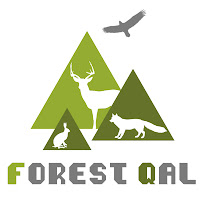 Forest QAL