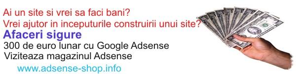 Google Adsense - Castig Constant