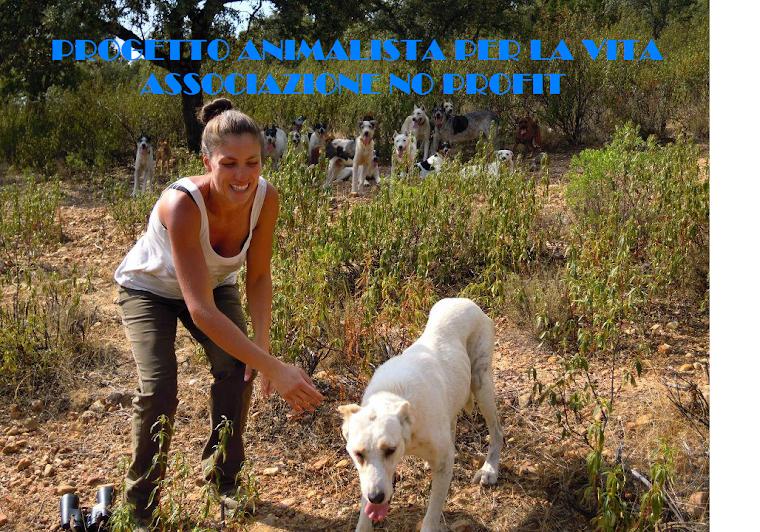 progetto animalista per la vita NO PROFIT