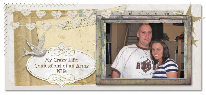 My Crazy Life: Confessions of an Army Wife