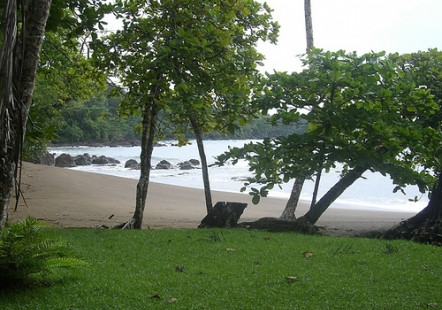 Playa Cocalito, Puntarenas