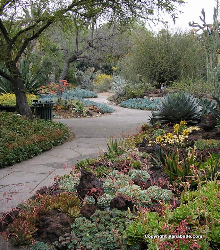 Top World Travel Destinations Huntington Library Cactus