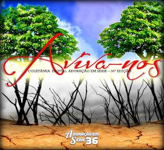 Baixar CD capa Adoração Em Série – Vol 36: Aviva nos (2013)