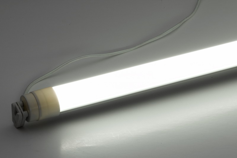 Bare Fluorescent Tube With Tube Socket