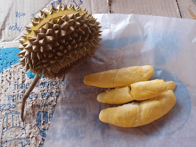 Uttaradit Lin Laplae durian หลิน