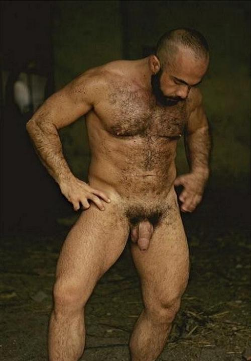 gay cho7 gay poilus