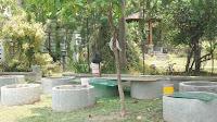 Peternakan Cupang Adu Super