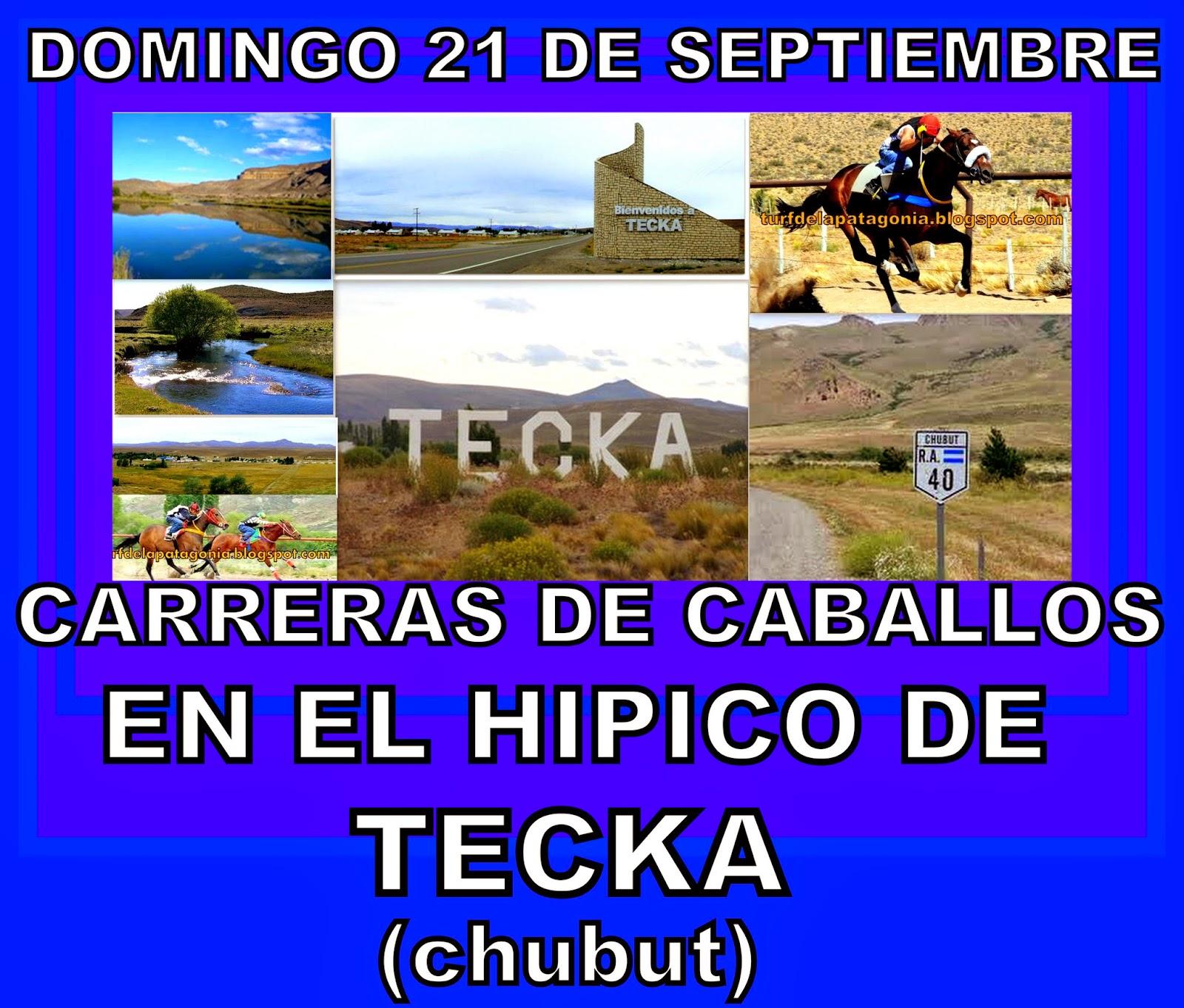 http://turfdelapatagonia.blogspot.com.ar/2014/09/2109-programa-de-carreras-de-caballos.html