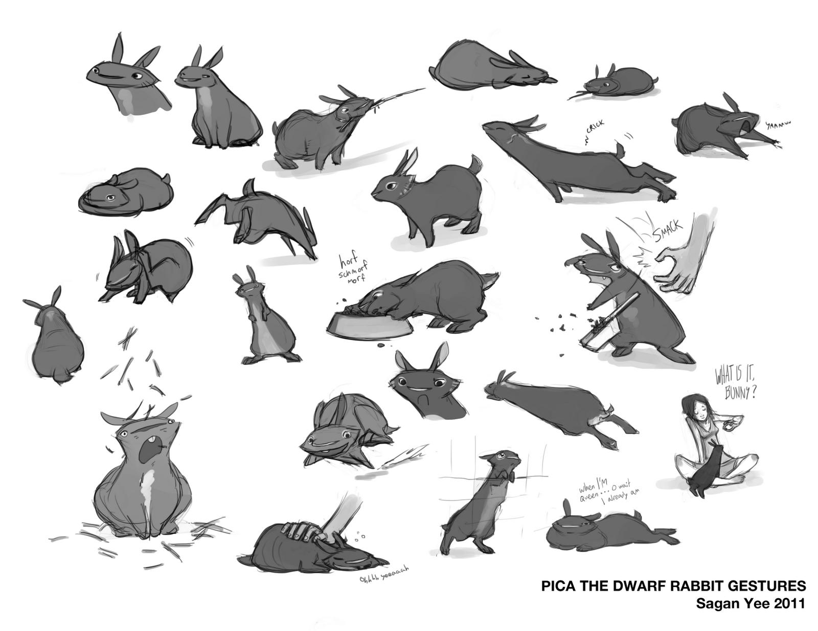 saganimation the art of sagan yee pica the dwarf rabbit sketches