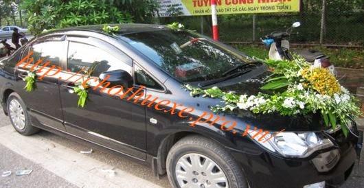 Cho thuê xe cưới Honda Civic giá rẻ Đức Vinh Trans