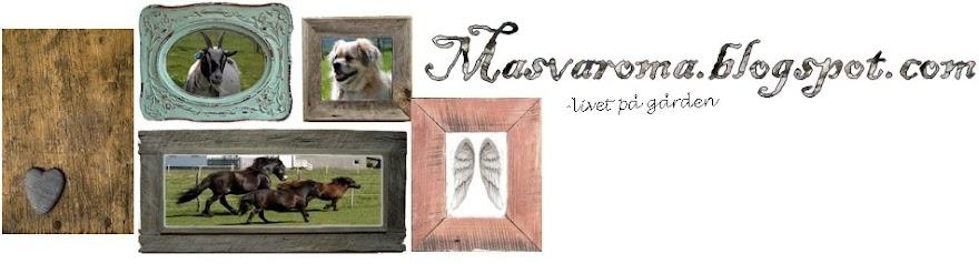 masvaroma.blogspot.com.