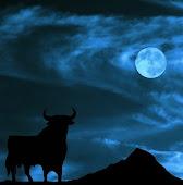 El toro y la luna