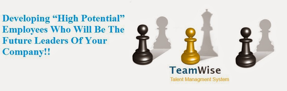 TeamWise-Talent-Management-System