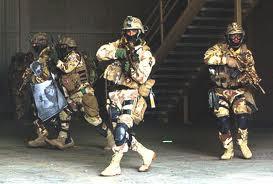 PrairiePundit: Iraqis want US special ops to stick around after ...