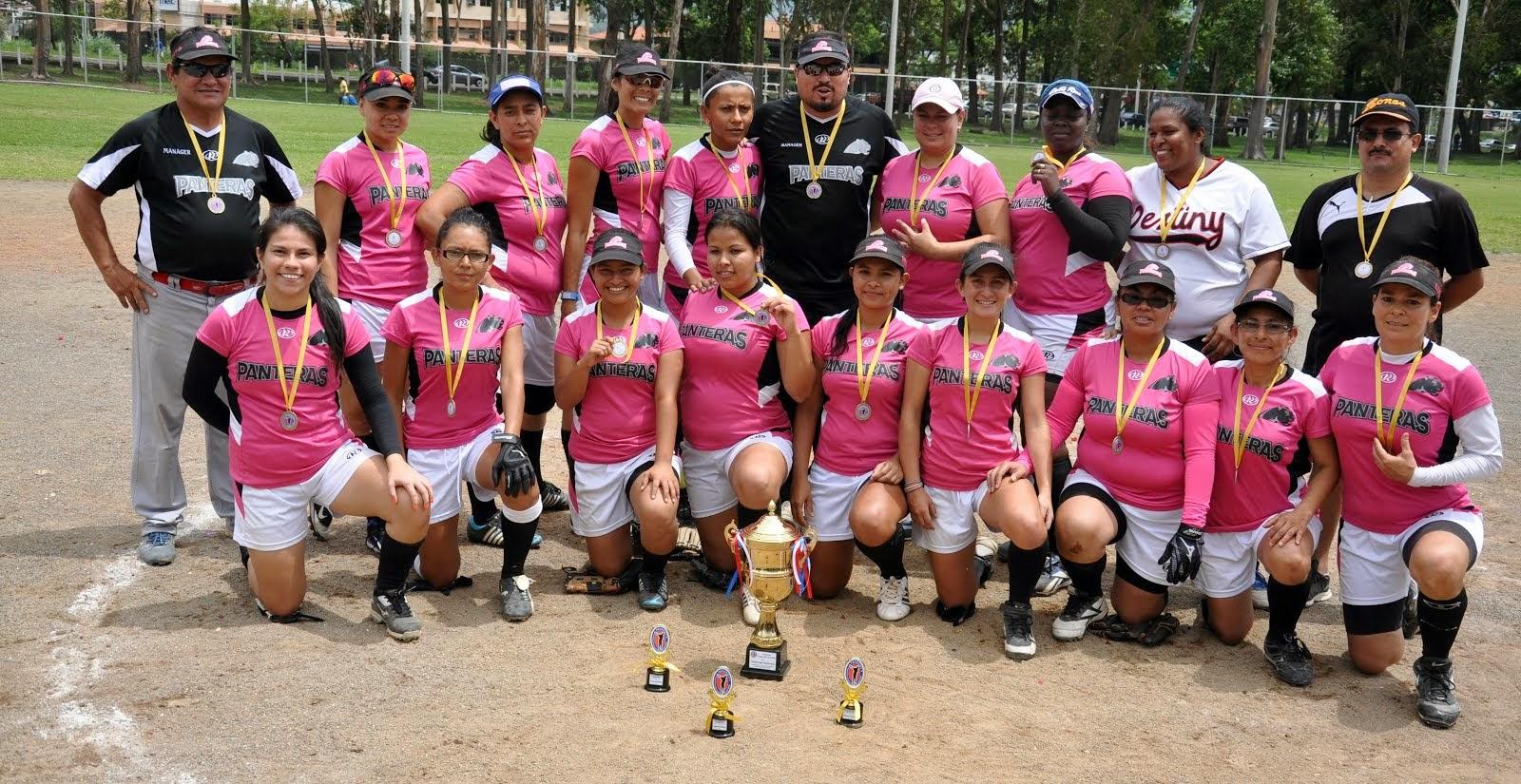 Liga Softbol Femenino 2014
