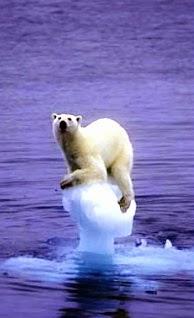 ¿Qué es el cambio climatico?