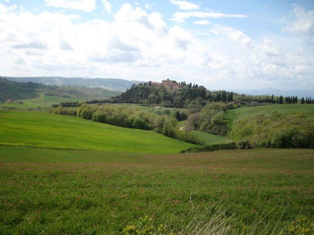Spring in Tuscany; green fields near the Castle of Porrona,