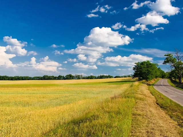 """<img src=""""http://1.bp.blogspot.com/-1AWr5vZcmoI/UqSAAPK7S9I/AAAAAAAAEnQ/as4Zhs96jCw/s1600/fdfdd.jpeg"""" alt=""""Clouds wallpapers"""" />"""