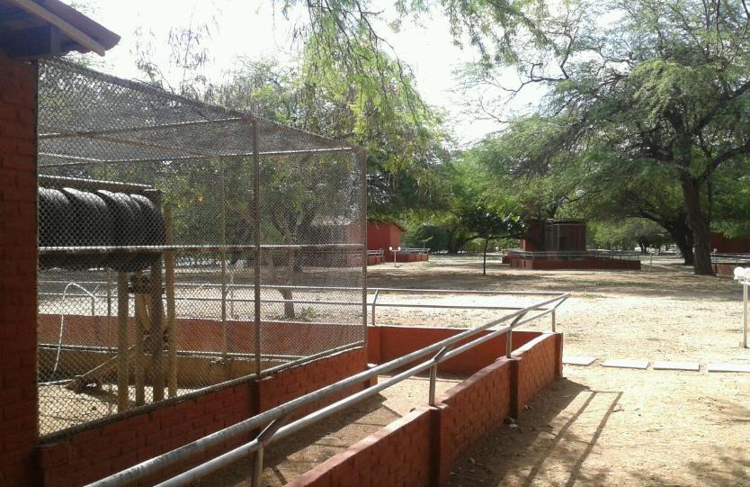 Parque Zoobotânico da Caatinga