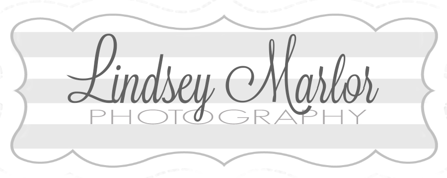 Lindsey Marlor Photography