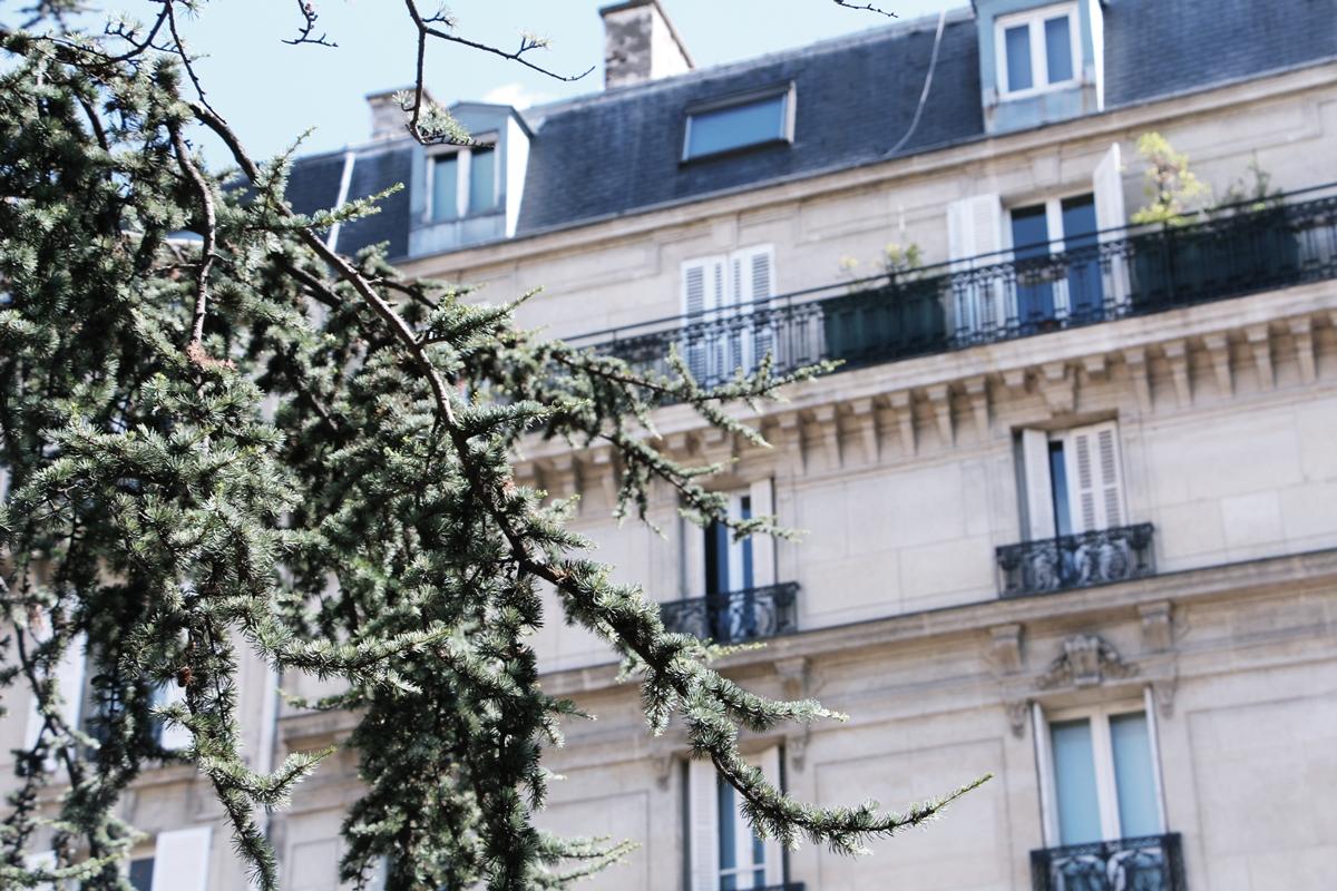 PARIS SNAPSHOTS