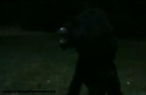 New Jersey Supuesta criatura grabada a las afueras de una casa de campo Extra%C3%B1o-animal