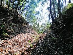 忍山城(岡山県岡山市北区上高田)