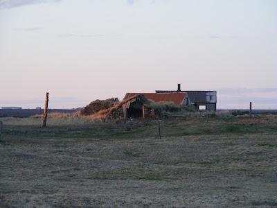 Hafnir, Islanda
