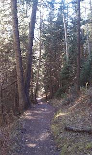 Butler Fork Trail