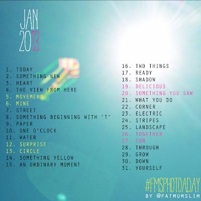 January List fmsphotoaday
