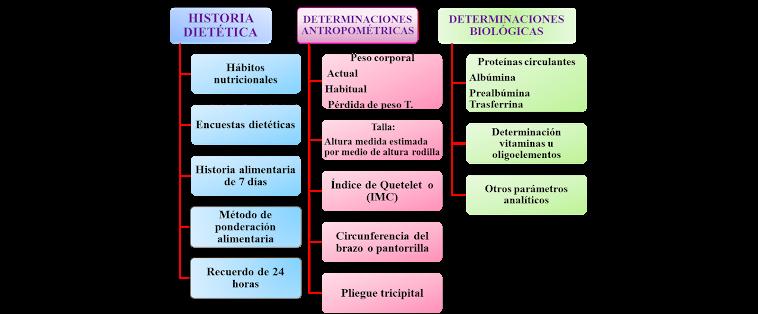 PARAMETROS INDICATIVOS DEL ESTADO NUTRICIONAL