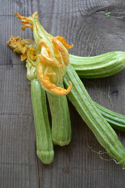 ricetta fiori di zucca fritti e ripieni di mozzarella e acciuga