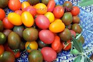 I  pomodorini di Pula