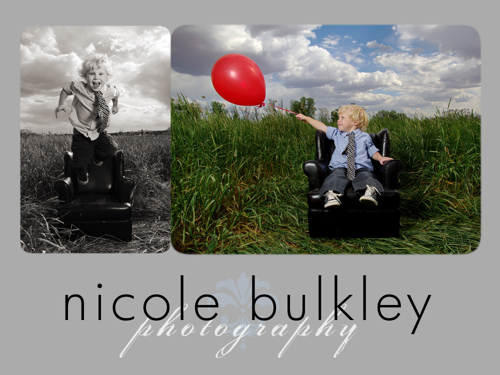 Nicole Bulkley Photography