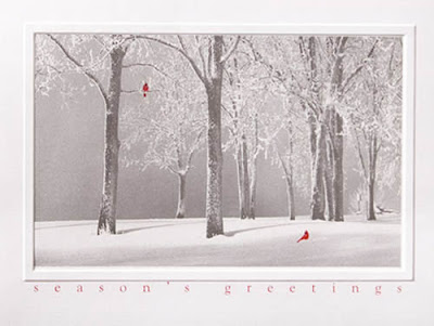 Snow Landscape Christmas - Landscapes from CardsDirect