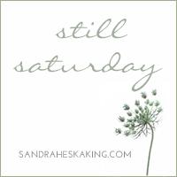 http://sandraheskaking.com/blog/