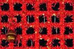 【出羽羽黒山 2446段 「出羽三山神社 出羽神社」(山形県鶴岡市)】