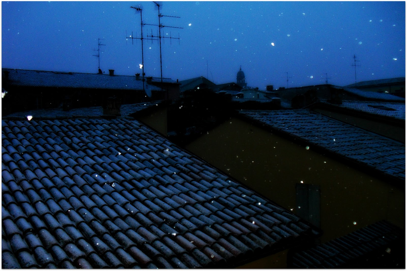 nieve Faenza
