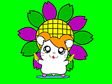 Little Hamtaro