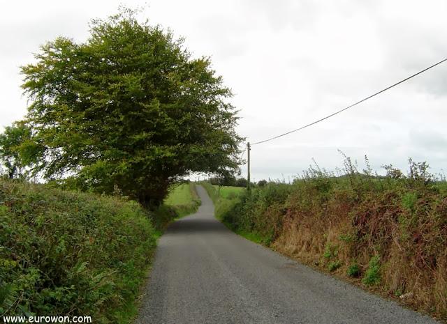 Carretera del centro de Irlanda