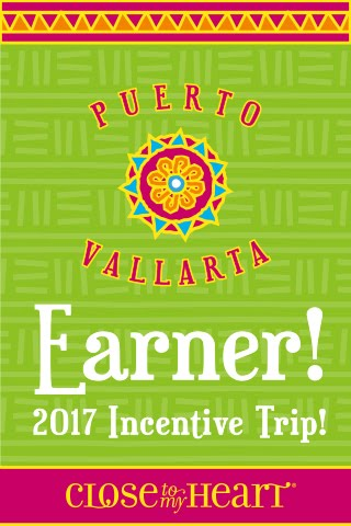 I EARNED the Puerto Vallarta Land Tour 2017!!