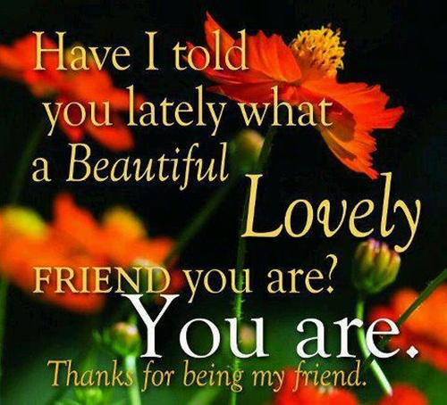 Quote for a pretty friend : Thanks for being my friend quotes quotesgram